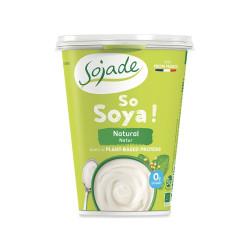 Yogurt di soia al naturale